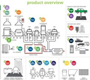 Productos ecológicos para limpieza profesional